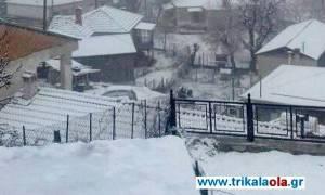 Η επέλαση της «Ιοκάστης»: Στα... λευκά τα Τρίκαλα (pics+vid)