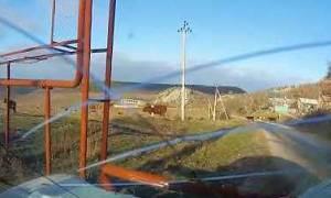 Σοκαριστική σύγκρουση αυτοκινήτου με αγελάδα μπροστά στην κάμερα... (video)