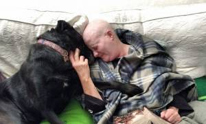 Αυτή η γυναίκα και ο σκύλος της πάλεψαν μαζί τον καρκίνο