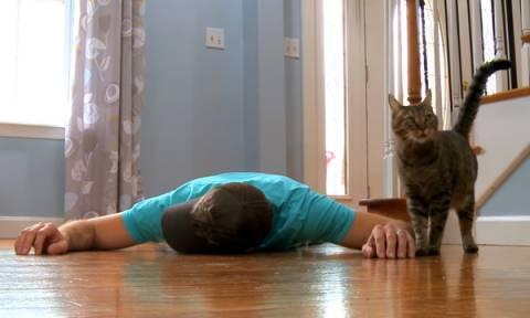 Προσποιείται ότι πεθαίνει μπροστά στη γάτα του. Η αντίδρασή της προκάλεσε μεγάλη συζήτηση (vid)