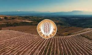 ΟΠΕΚΕΠΕ - Προσοχή! Από σήμερα (23/2) η υποβολή αιτήσεων ενίσχυσης των γεωργών για το 2018