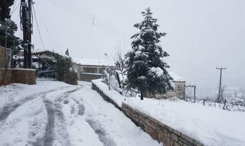 Καιρός: «Σαρώνει» τη χώρα το φονικό βαρομετρικό με χιόνια, βροχές και χαλάζι
