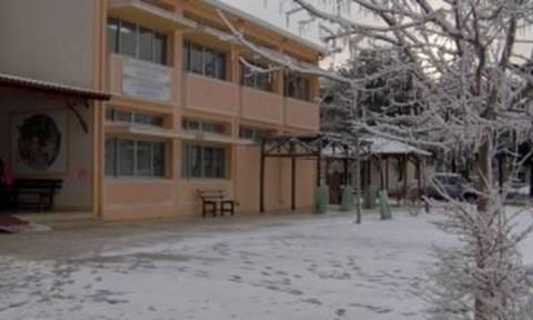 Κακοκαιρία: Κλειστά σήμερα (26/2) τα σχολεία σε πολλούς δήμους της Δυτικής Μακεδονίας