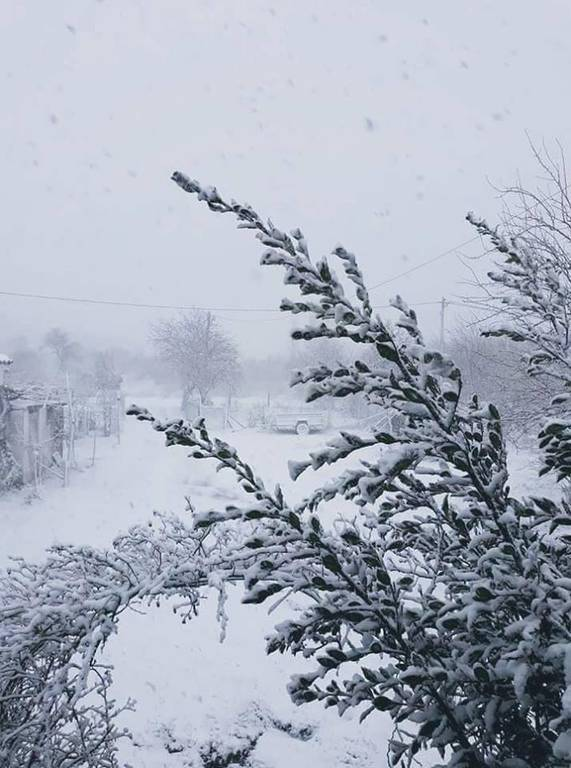 Καιρός: Πολικές θερμοκρασίες στον Έβρο - Πού χρειάζονται αντιολισθητικές αλυσίδες (pics)