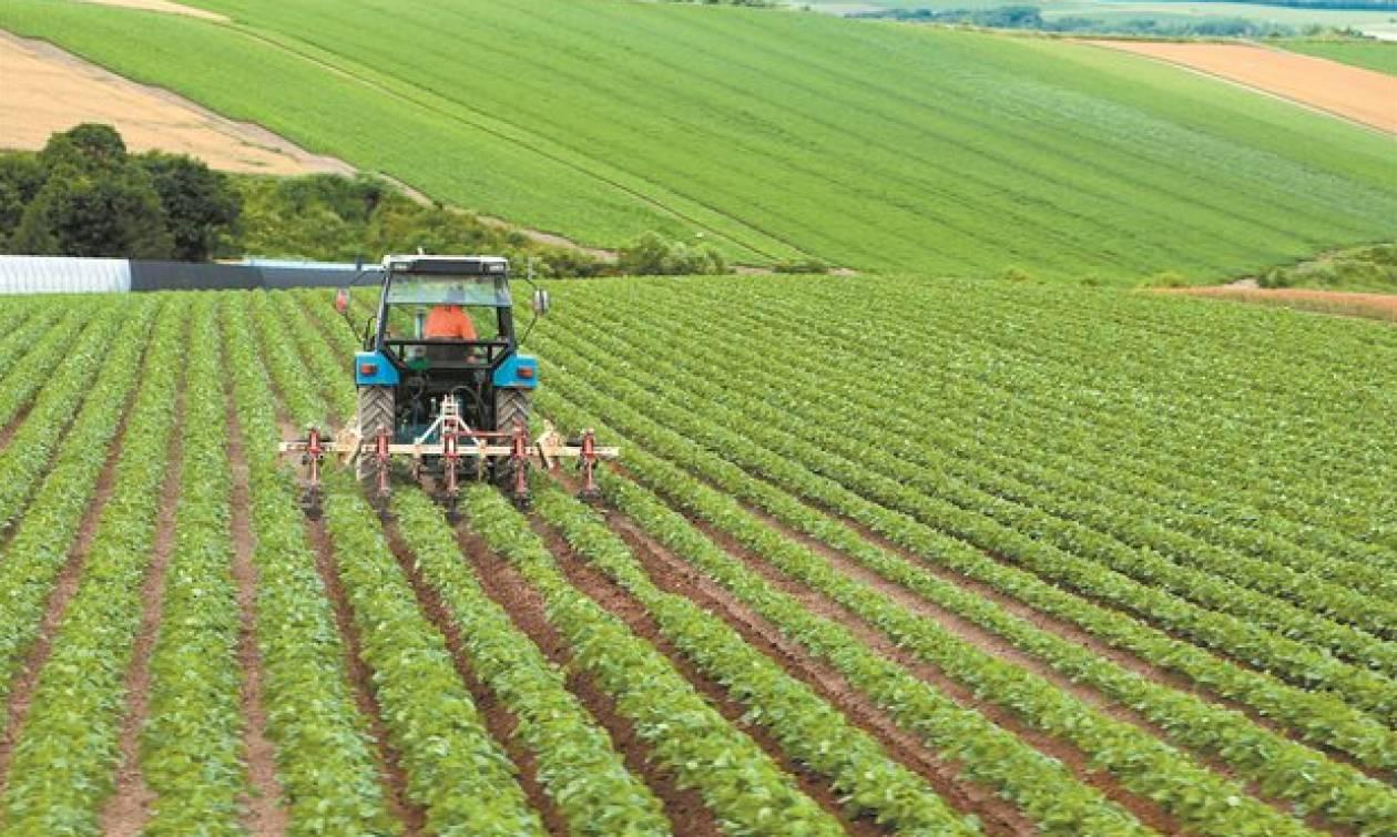 Είστε αγρότης; Έτσι θα «κουρέψετε» έως το 60% του «κόκκινου» δανείου σας