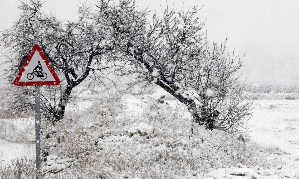 Χιονοθύελλα «Έμμα»: Πανικός στα σουπερμάρκετ - Άδειασαν τα ράφια