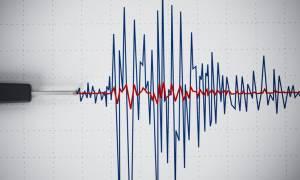 Σεισμός ΤΩΡΑ: Δείτε LIVE τι καταγράφουν οι σεισμογράφοι