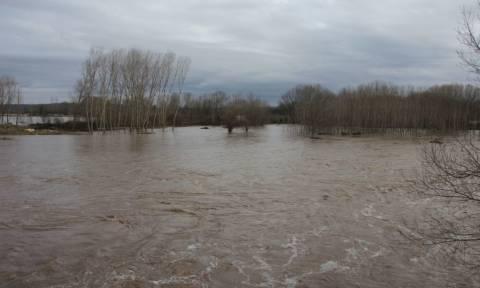 Καιρός: Σε επιφυλακή ο Έβρος - «Φούσκωσαν» τα ποτάμια