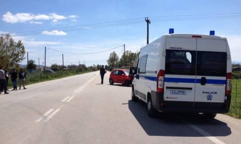 Αλεξανδρούπολη: Όχημα που μετέφερε παράνομους μετανάστες εξετράπη της πορείας του