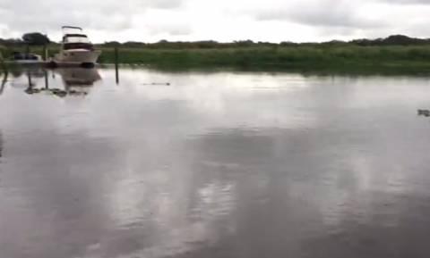 Έριξε νερό με έναν κουβά στο ποτάμι – Αυτό που έγινε δεν το έχετε ξαναδεί! (vid+pics)