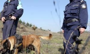 Έβρος: Τι υποστηρίζουν οι Γερμανοί δημοσιογράφοι που συνελήφθησαν σε απαγορευμένη περιοχή