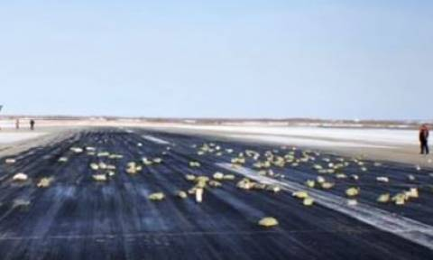 Απίστευτες εικόνες: 3,4 τόνοι χρυσού έπεσαν από αεροπλάνο! (vid)