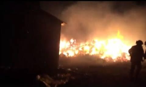 Γρεβενά: Καταστροφές και πυρκαγιά προκάλεσαν οι ισχυροί άνεμοι (videos)