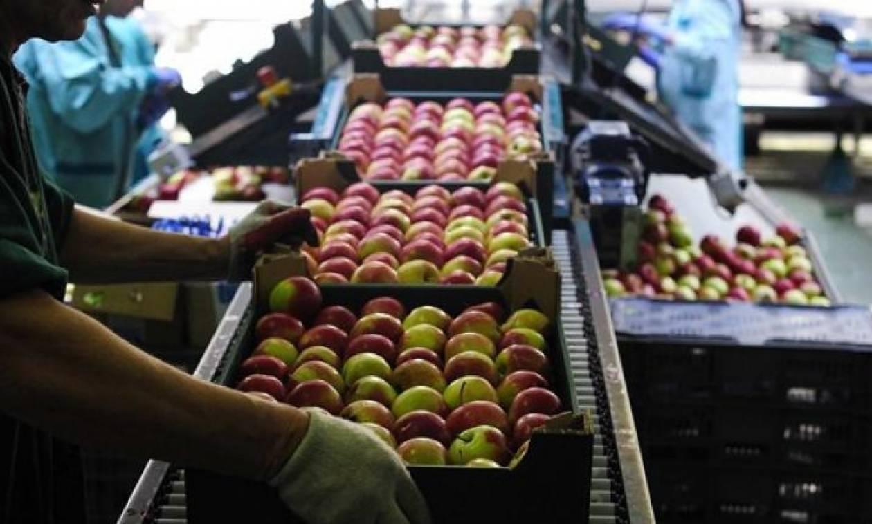 Συναγερμός για τρόφιμα – δηλητήριο από Τουρκία