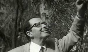 Ποιος είναι ο Μεξικανός αστρονόμος που τιμά η Google; Ο Γκιγιέρμο  Άρο και τα νεφελώματα