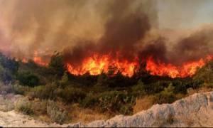 Συναγερμός στην Πυροσβεστική - Νέο πύρινο μέτωπο στην Κρήτη