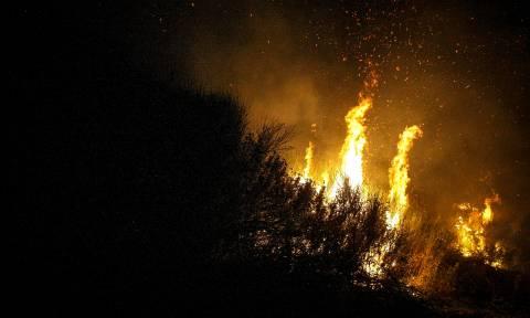Φωτιά: Μάχη με τις φλόγες δίνει η Πυροσβεστική σε πολλές περιοχές των Χανίων
