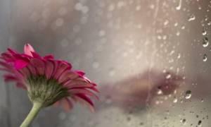 Καιρός: Βροχές και καταιγίδες το Σάββατο - «Επιστρέφει» η σκόνη την Κυριακή