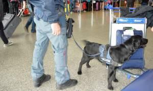 Ιταλία: Σε συναγερμό οι Αρχές ενόψει του Πάσχα - Φόβοι για τρομοκρατικό χτύπημα