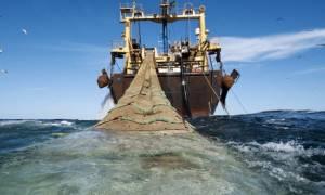 Τουρκική «εισβολή» με αλιευτικά σε Θρακικό πέλαγος και Αιγαίο