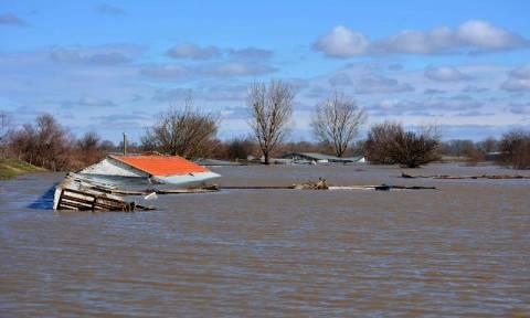 Συναγερμός στους ποταμούς Έβρο και Άρδα: Ξεπέρασε το όριο επικινδυνότητας η στάθμη του νερού