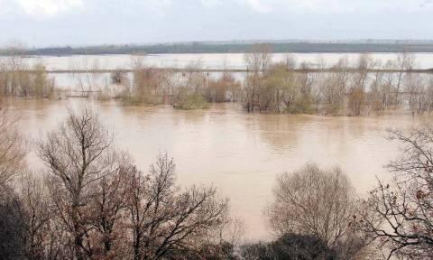 Έβρος: Σε κατάσταση έκτακτης ανάγκης ζητούν να κηρυχθούν 4 δήμοι