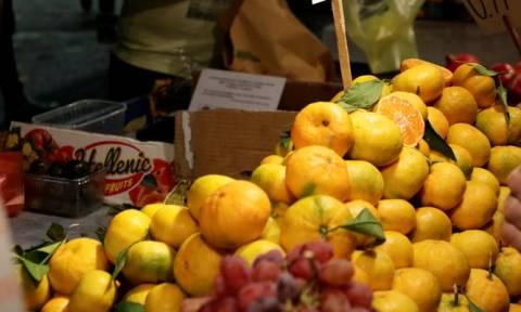 Πειραιάς: Κατασχέθηκαν επικίνδυνα φρούτα