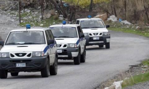 Κρήτη: «Βεντέτα» κτηνοτρόφων με εμπρησμούς, αρπαγές και ζωοκτονίες