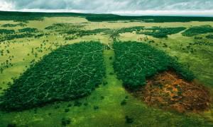Κλιματική Αλλαγή: Πώς επηρεάζεται η χώρα μας - Τι δείχνει το μέλλον