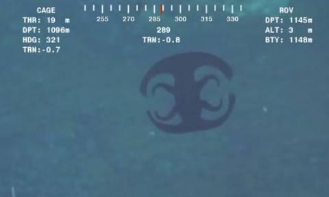 Εξωπραγματικά τρομακτικό: Δύτες εντοπίζουν «εξωγήινο» πλάσμα στο βυθό και παθαίνουν σοκ... (video)