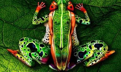Τι βλέπετε σε αυτή τη φωτογραφία; Ολοι πιστεύουν πως υπάρχει βάτραχος (photo)