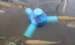 Το απίστευτο κόλπο για εγγυημένη ψαριά! Μόλις το δείτε θα το κάνετε αμέσως! (video)
