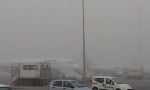 Τοπίο στην... ομίχλη η Κρήτη - Δείτε σε ποια αεροδρόμια ακυρώνονται πτήσεις (pics)