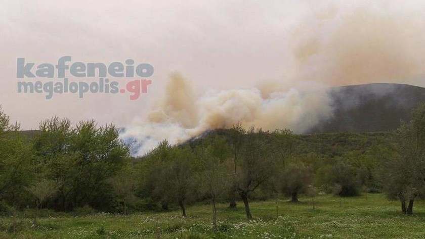ΕΚΤΑΚΤΟ - Φωτιά: Εκκενώνονται σπίτια στην Ηλεία - Πύρινος «εφιάλτης» στη Φρίξα (pics+vid)