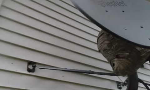 Σήκωσε Drone έξω απ' το σπίτι του - Μόλις ανακάλυψε τι υπήρχε πίσω από τη δορυφορική έπαθε σοκ (vid)
