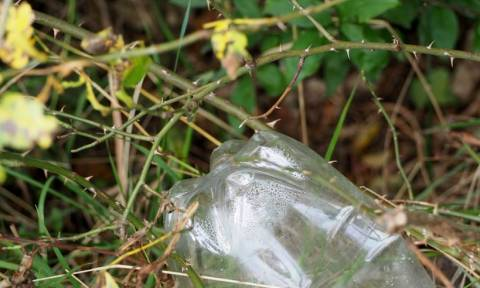 Τρομερή νίκη στη «μάχη» κατά της ρύπανσης: Δημιουργήθηκε ένζυμο που τρώει... πλαστικά μπουκάλια