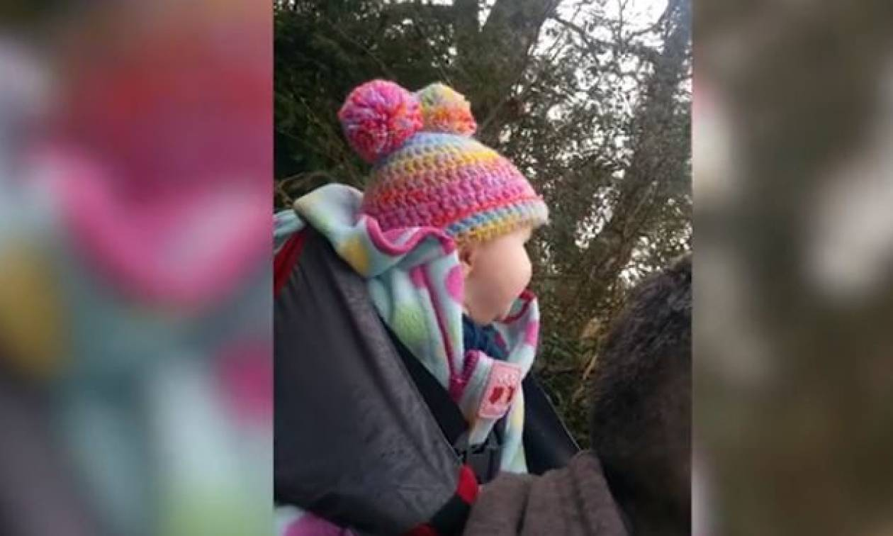 Πήγαν για πρώτη φορά βόλτα με το μωρό τους στο δάσος! Η αντίδρασή του θα σας φτιάξει τη μέρα (video)