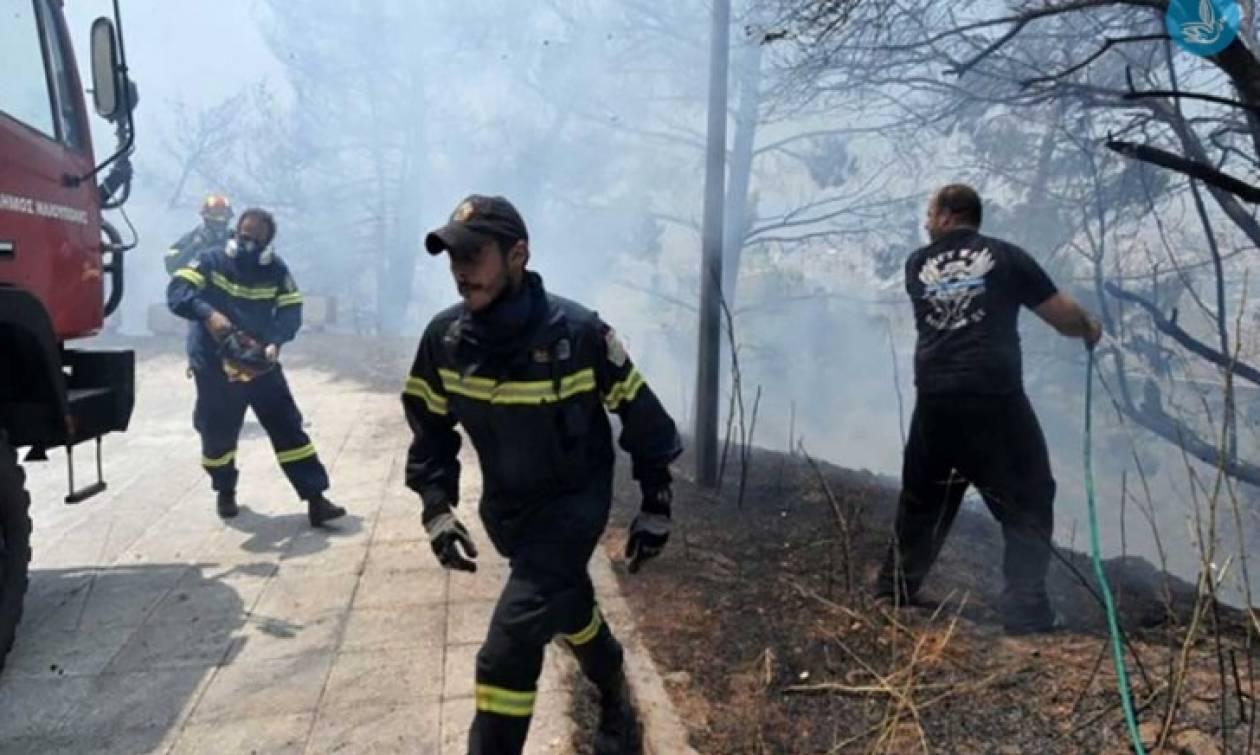 Ανανέωση πρόσληψης για 1.500 εποχικούς πυροσβέστες