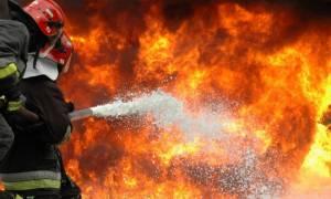 Προσλήψεις: Έρχονται 1.500 θέσεις εποχικών πυροσβεστών
