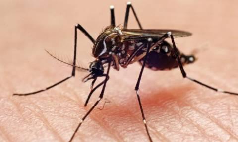 Τρόμος από την εξάπλωση ιού που τρώει τη σάρκα