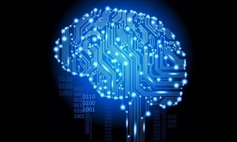 Το λες και τρομακτικό: Επιστήμονες διατήρησαν ζωντανούς εγκεφάλους επί 36 ώρες χωρίς το… σώμα!