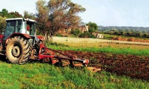 Παράταση έως τις 15 Ιουνίου για τις Ενιαίες Αιτήσεις Ενίσχυσης των αγροτών