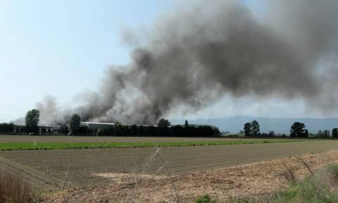 Ξάνθη: Κλειστά και αύριο (03/05) τα σχολεία λόγω της μεγάλης φωτιάς σε εργοστάσιο (pics)