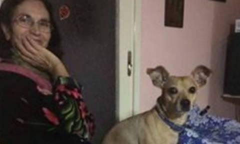 Τραγωδία στον Υμηττό: Σκύλος έμεινε 4 ημέρες πλάι στο σώμα της αφεντικίνας του