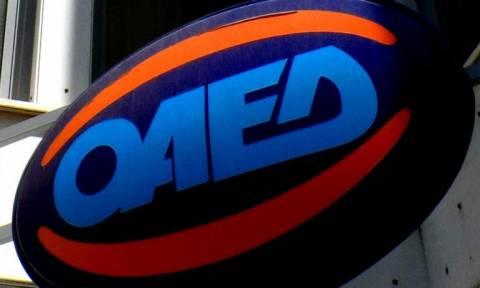 ΟΑΕΔ: Νέα προγράμματα για νέους και αυτοαπασχολούμενους ανακοίνωσε η Καραμεσίνη