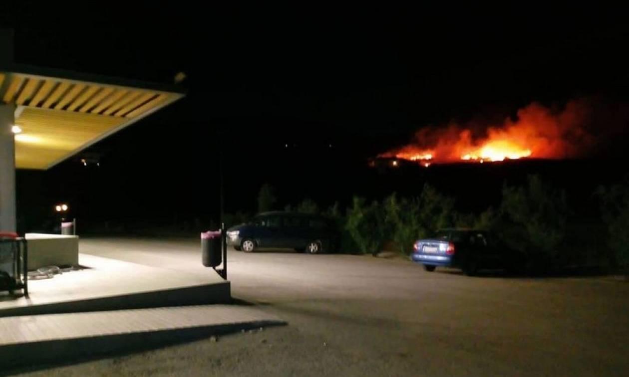 ΤΩΡΑ: Μεγάλη πυρκαγιά στη Σκάλα Κεφαλονιάς κοντά σε ξενοδοχείο