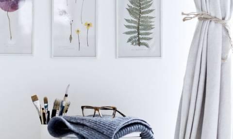 Framed Plants: To νέο trend που αγαπήθηκε ήδη στο Pinterest