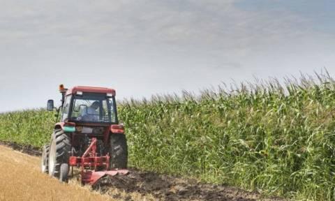 Ρύθμιση «ανάσα» για χιλιάδες δανειολήπτες αγρότες