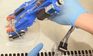 Τεχνολογικό θαύμα: Δημιουργήθηκε ο πρώτος τρισδιάστατος φορητός εκτυπωτής δέρματος (Vid)