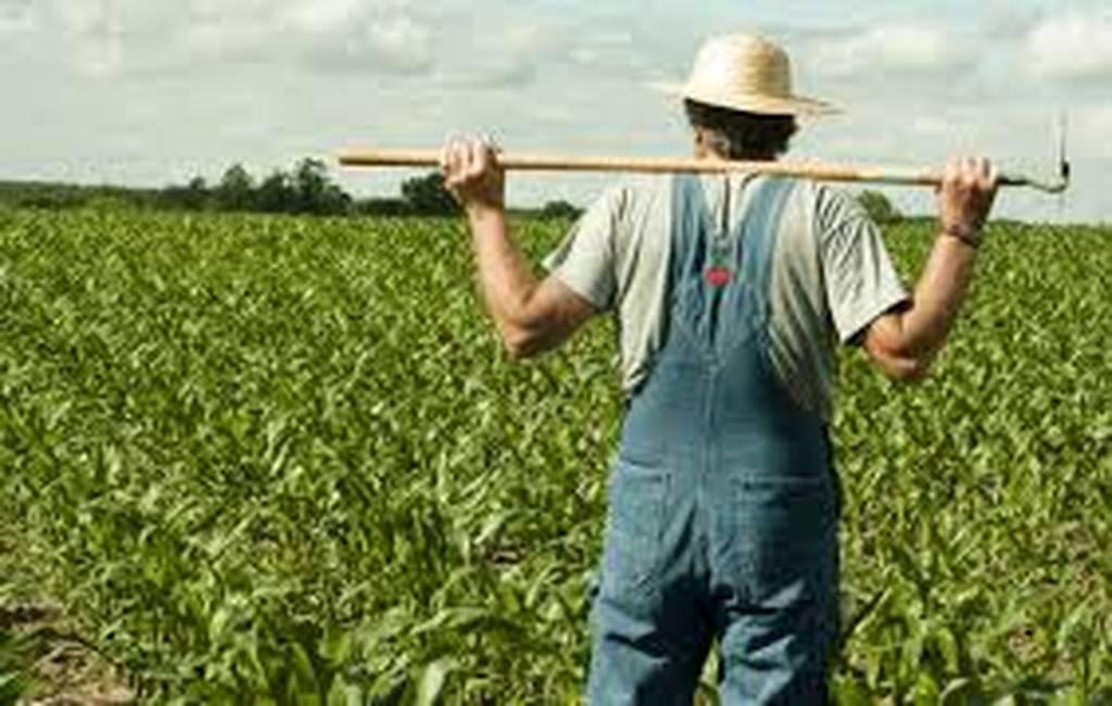 """Αποστόλου: Εντός των ημερών θα ανοίξει η πλατφόρμα για τα """"κόκκινα"""" αγροτικά δάνεια"""